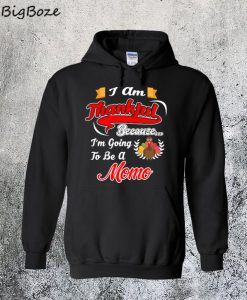 Thanksgiving Gift Going To Be A Momo Hoodie